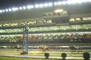 09年ナイター初日 内馬場から見たレース