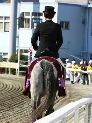 ダービー馬 誘導馬 デビュー 7
