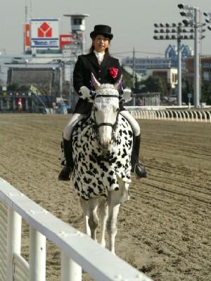 川崎の誘導馬 カゥくん トーチくんVer 3