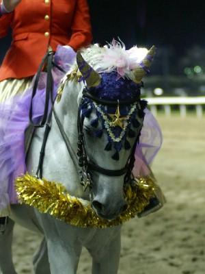 川崎の誘導馬7月重賞Ver3