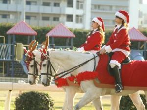 川崎競馬の誘導馬 クリスマス 2頭Ver 2