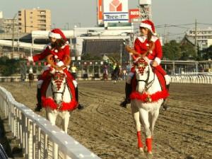 川崎競馬の誘導馬 クリスマス 2頭Ver 3