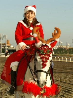 川崎競馬の誘導馬 クリスマス 2頭Ver 5