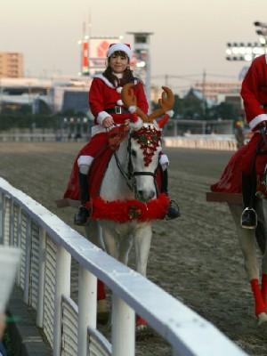 川崎競馬の誘導馬 トナカイ 3頭立てVer 10