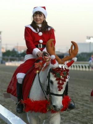 川崎競馬の誘導馬 トナカイ 3頭立てVer 11
