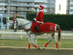 川崎競馬の誘導馬 トナカイ 3頭立てVer 3