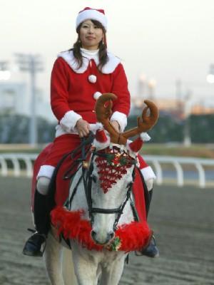 川崎競馬の誘導馬 トナカイ 3頭立てVer 7