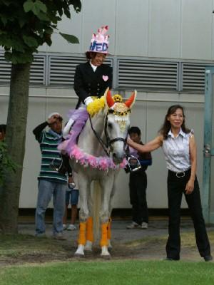 川崎競馬の誘導馬 結婚祝いVer 1