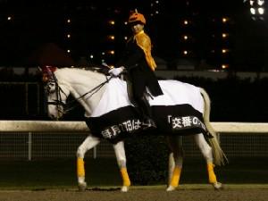 川崎競馬の誘導馬 10月 パトロールホースVer ユーちゃん 2