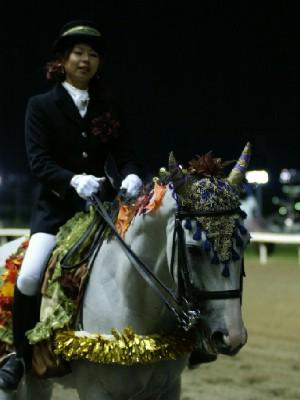 川崎競馬の誘導馬 10月もみじVer 3