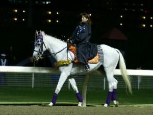 川崎競馬の誘導馬 10月ハロウィンVer その2-1