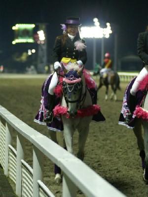 川崎競馬の誘導馬 10月重賞Ver4