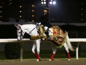 川崎競馬の誘導馬 11月 もみじVer ユーちゃん 2