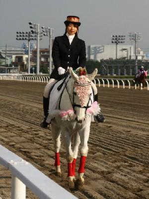 川崎競馬の誘導馬 12月開催 初心者マークVer トーチくん