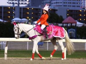 川崎競馬の誘導馬 12月開催 誕生日祝いVer 2