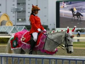川崎競馬の誘導馬 12月開催 xmas 平場Ver ジョイくん 5