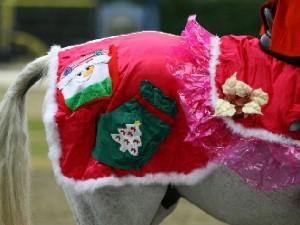川崎競馬の誘導馬 12月開催 xmas 平場Ver ジョイくん 6