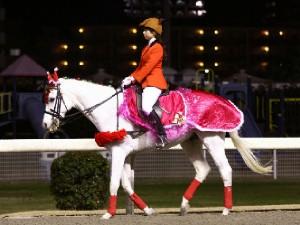 川崎競馬の誘導馬 12月開催 xmas 平場Ver ユーちゃん 2