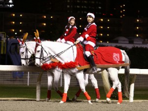 川崎競馬の誘導馬 12月開催 xmas 2頭立てVer 2