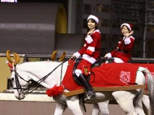 川崎競馬の誘導馬 12月開催 xmas 2頭立てVer 4