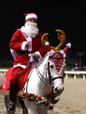 川崎競馬の誘導馬 12月開催 xmas サンタ付き3頭立てVer 3
