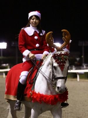 川崎競馬の誘導馬 12月開催 xmas 3頭立てVer2 4