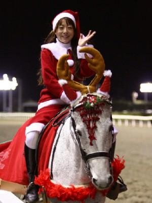川崎競馬の誘導馬 12月開催 xmas 3頭立てVer2 5