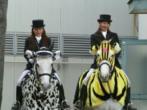 川崎競馬の誘導馬 2