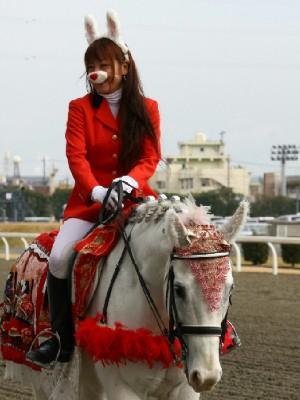 川崎競馬の誘導馬 3月開催 うさぎ&ひな祭りVer 3
