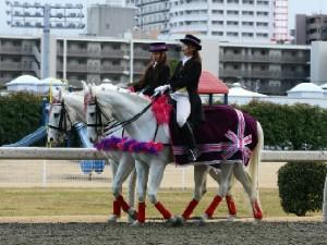 川崎競馬の誘導馬 3月開催 重賞Ver 1