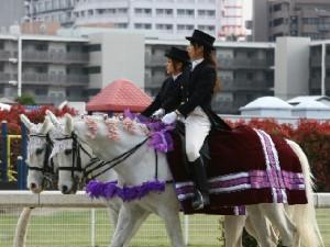 川崎競馬の誘導馬 4月開催 桜&重賞Ver 1