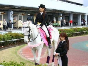 川崎競馬の誘導馬 4月開催 義援金募金Ver 4.jpg