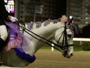 川崎競馬の誘導馬 5月開催 藤Ver アロワナくん 5