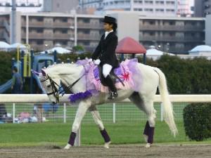 川崎競馬の誘導馬 5月開催 藤Ver ユーちゃん 2