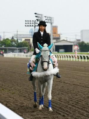 川崎競馬の誘導馬 6月開催 紫陽花 トーチくん 4