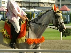 川崎競馬の誘導馬 8月ひまわり トーチくんVer 3