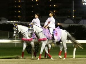 川崎競馬の誘導馬 8月ひまわり重賞Ver3