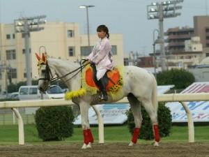 川崎競馬の誘導馬 8月開催 ユーちゃん 3