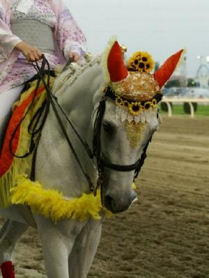 川崎競馬の誘導馬 8月開催 ユーちゃん 4