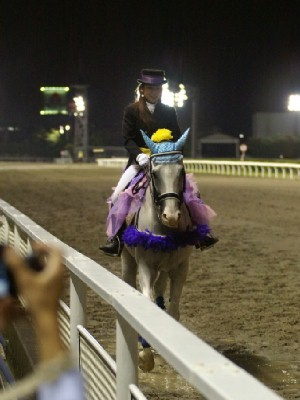 川崎競馬の誘導馬 9月開催 重賞Ver シロくん1