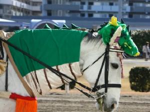 川崎競馬の誘導馬01月開催 辰Ver