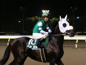 川崎競馬代表 今野忠成騎手