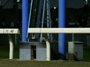 川崎競馬場の猫-090415-2
