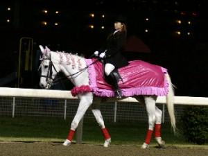 川崎競馬場の誘導馬 4月特別Ver 1