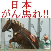 日本がん馬れ.jpg