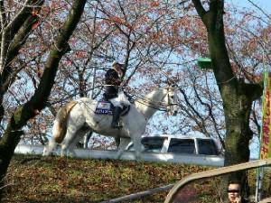 日本最高齢誘導馬 パクじぃ 3