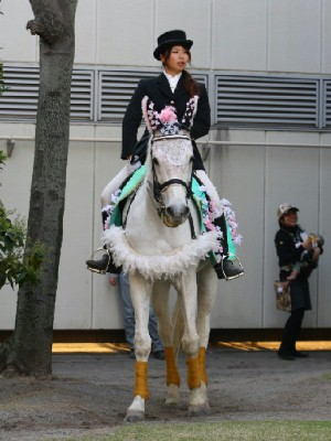 川崎競馬の誘導馬 新作桜の衣装