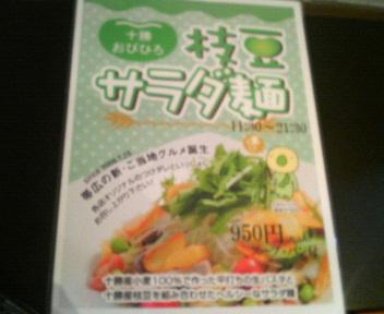 01枝豆サラダ麺 パンフレット.jpg