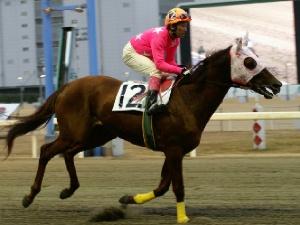 100128-12R-12-内田利雄騎手-4