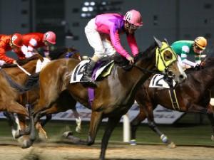 101119川崎ジョッキーズカップ 優勝は金子正彦騎手